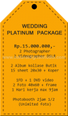 PAKET WEDDING PLATINUM 1