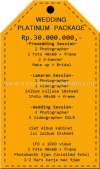 PAKET WEDDING PLATINUM 2